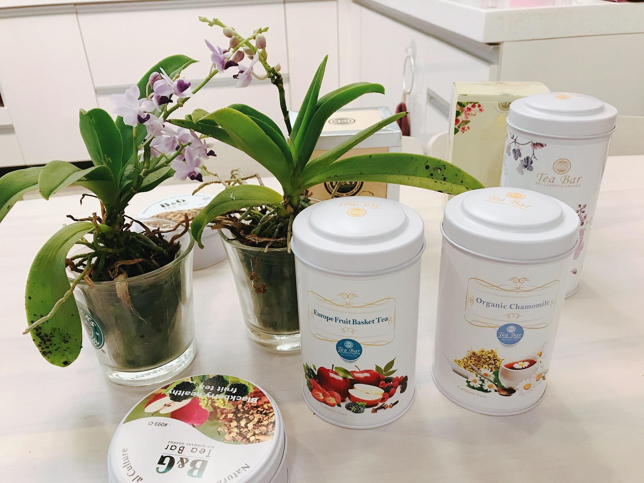『團購』純天然有機的德國農莊B&G茶品